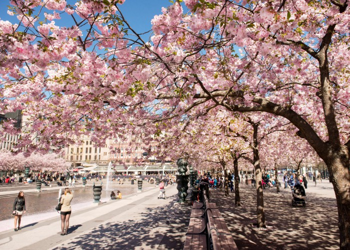 King's_Garden_Park_Stockholm_Sweden_2-e1417790487212